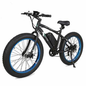beach snow electric bike