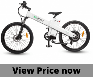Ecotric 1000w Mountain bike.png