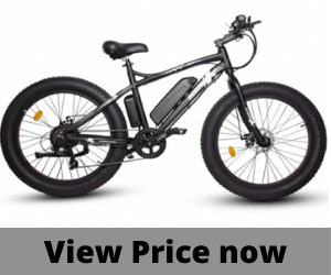 Ecotric 500w fat tire