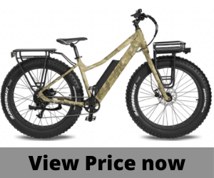 Surface 604 750W Fat Tire