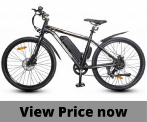 Ecotric 350W Vortex city e-bike