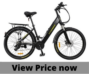 Lankeleisi Electric 350WCommuter